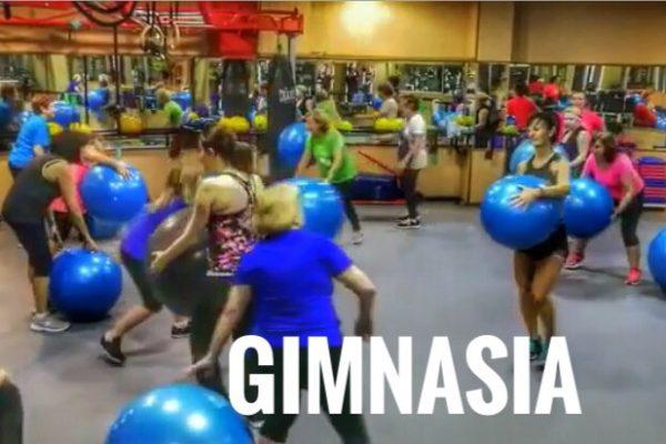 gimnasia nueva
